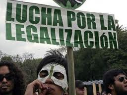Support the proposal for marijuana legalization in Uruguay