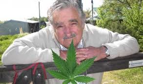 Uruguay could become the first country in the world to legalize marijuana.