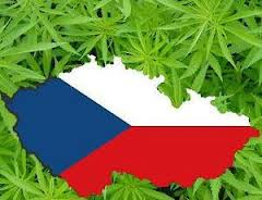 Czech Republic President Signs Bill Legalizing Medical Marijuana